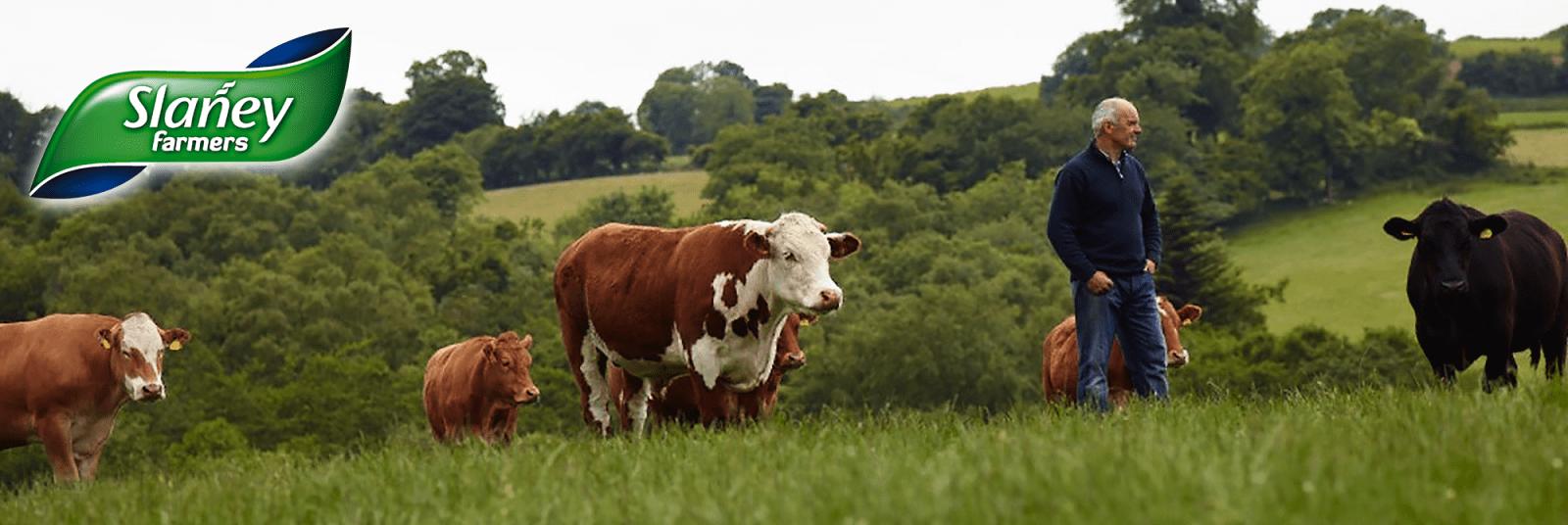 Slaney Farmers