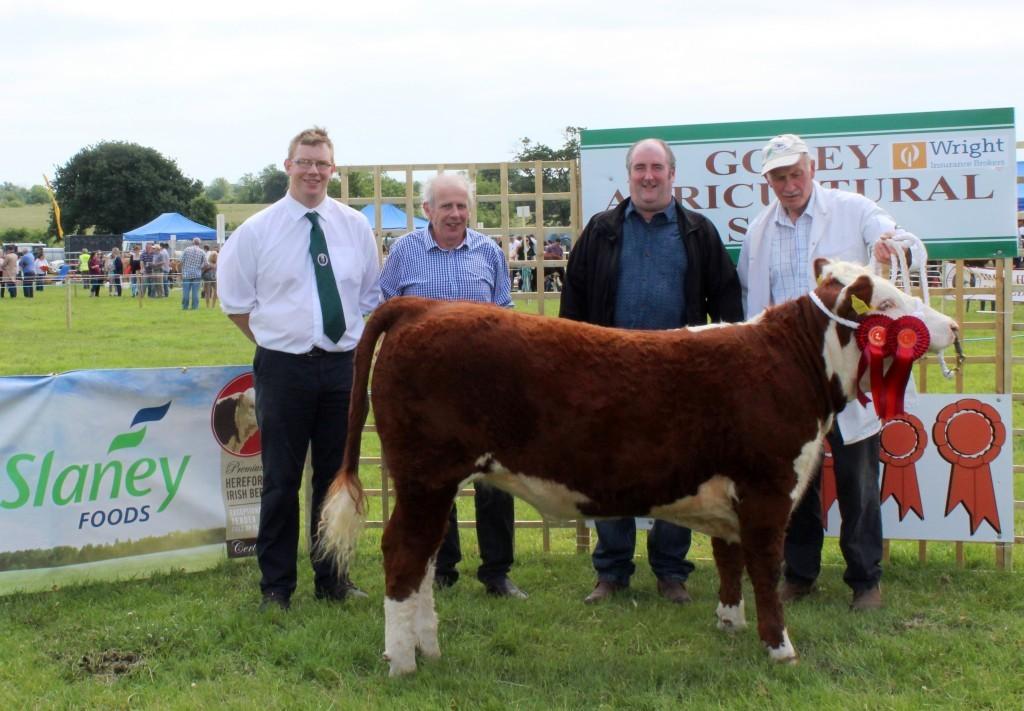5 Winner Junior Heifer Knockmountagh Willow Mervyn Parr IHBS John Neenan Judge Eamonn Moulds Sponsors Slaney Foods Int Eamon McKiernan